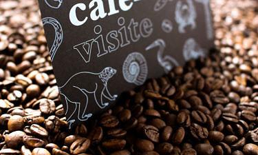 Café-visite